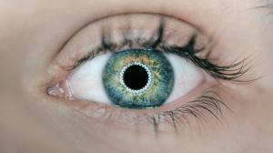 Adnami-skaber-10-gange-stoerre-opmaerksomhed-viser-eyetracking